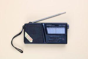 the-free-radio-salman-rushdie-summary-analysis